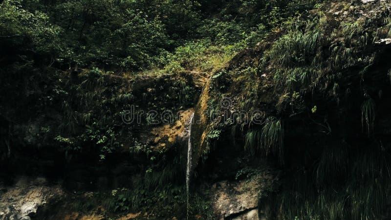 Кинематографическое воздушное изображение трутня водопада и небольшого бассейна глубоко в джунглях тропического леса на националь стоковое изображение