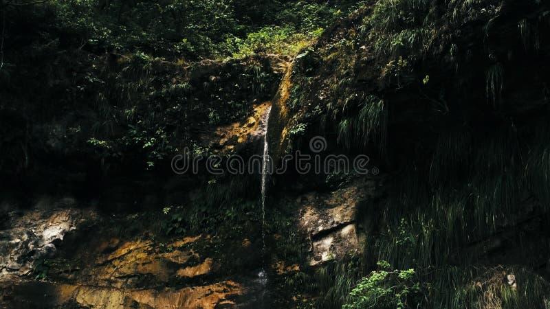 Кинематографическое воздушное изображение трутня водопада и небольшого бассейна глубоко в джунглях тропического леса на националь стоковые изображения
