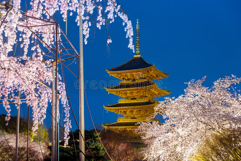 Киото, Япония на пагоде Toji с ligh blossomin вишни вверх в nig стоковые изображения