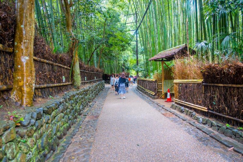 КИОТО, ЯПОНИЯ - 5-ОЕ ИЮЛЯ 2017: Неопознанные люди идя в путь на красивом бамбуковом лесе на Arashiyama, Киото стоковые фото