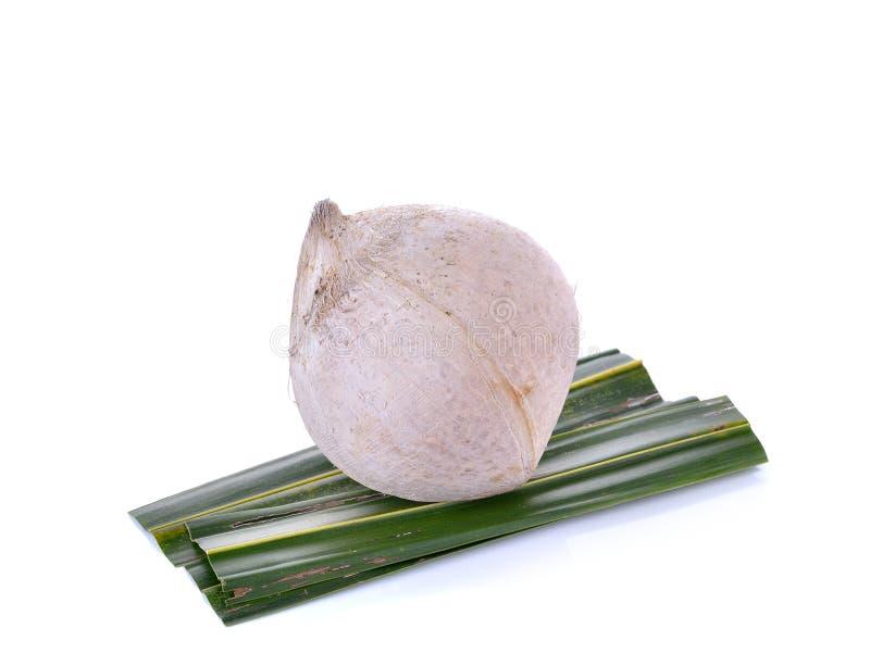 Кипеть кокос на белой предпосылке стоковое фото rf