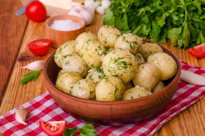 Кипеть молодые картошки с маслом, укропом и чесноком стоковое фото rf