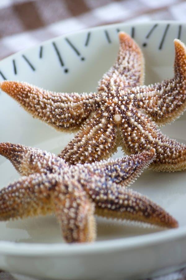 Кипеть съестные морские звёзды стоковая фотография rf