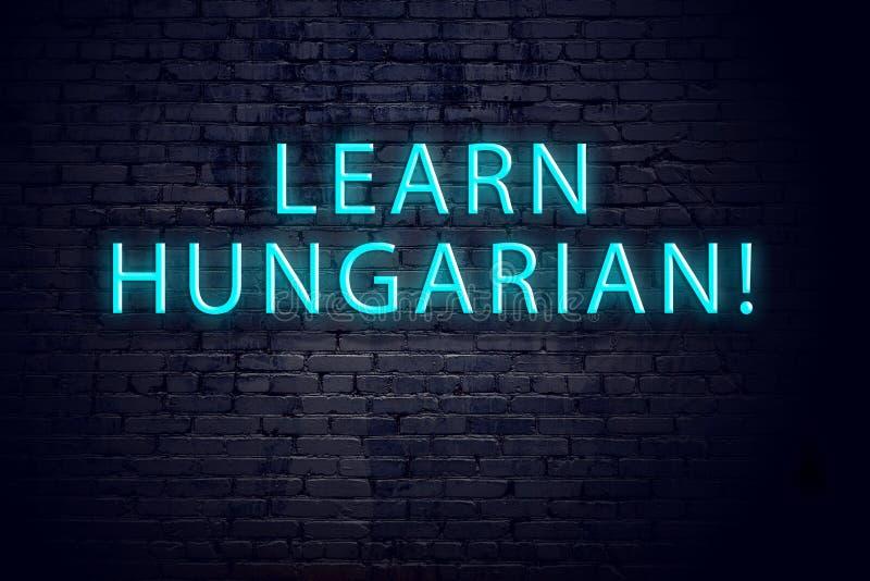 Кирпичная стена и неоновая вывеска с надписью Концепция учить венгерс иллюстрация вектора