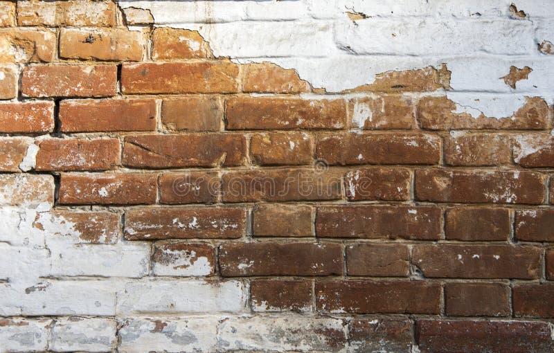 Кирпичная стена покрашена с белой краской стоковая фотография rf