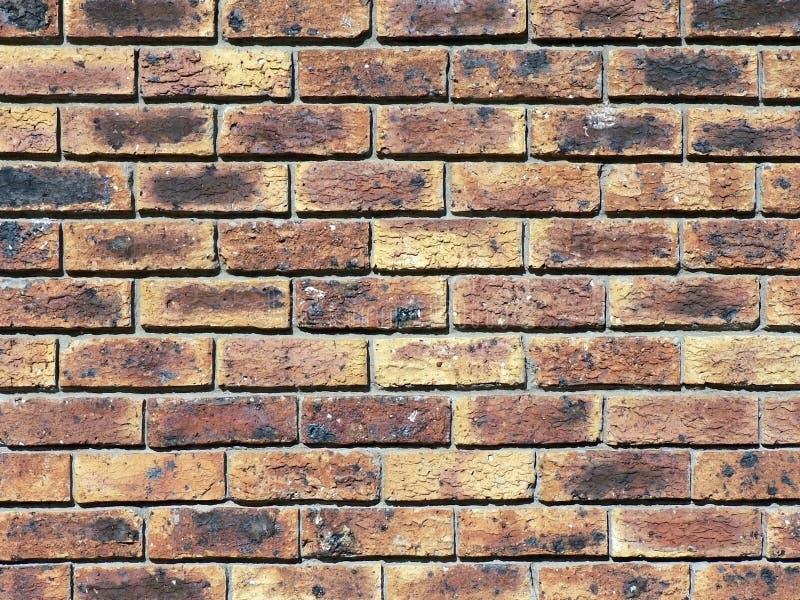 кирпичная стена предпосылки стоковая фотография
