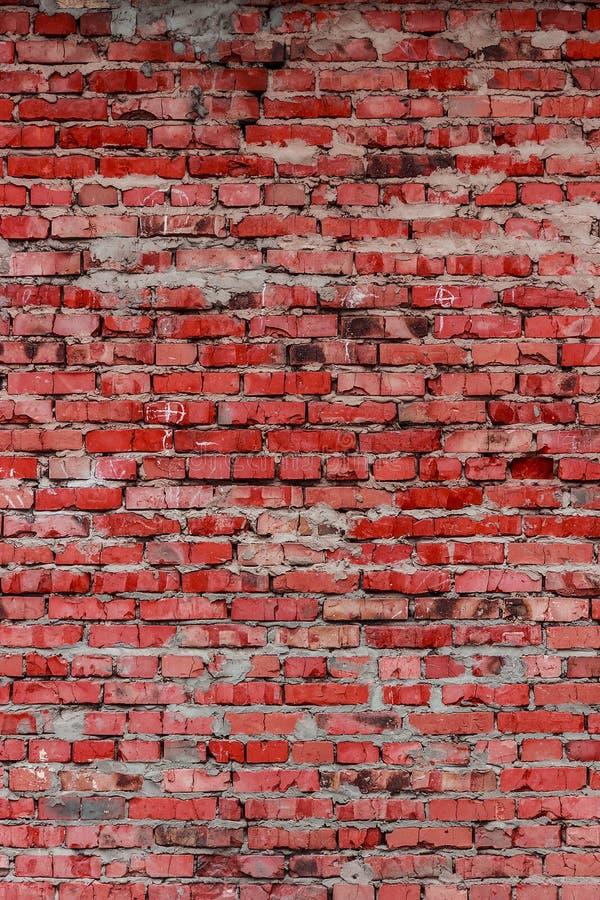 Кирпичная стена (предпосылка и текстура) стоковые фото