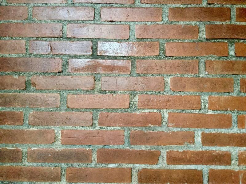 Кирпичная стена Справочная информация Терракота стоковая фотография rf