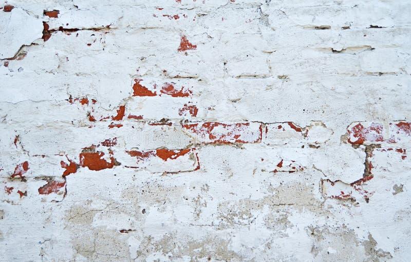 Кирпичная стена с белым беля концом вверх стоковое изображение