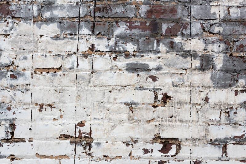 Кирпичная стена с толстыми слоями белой и серой краски шелушения стоковые фото