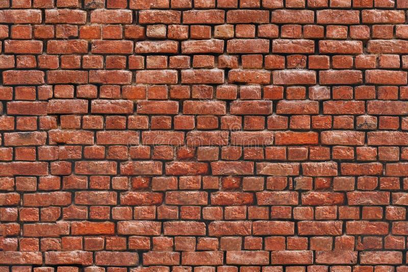 Кирпичная стена текстуры красной глины безшовной стоковое фото