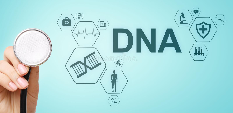 Кислота ДНК дизоксирибонуклеиновая Медицинская концепция науки здра стоковые фотографии rf