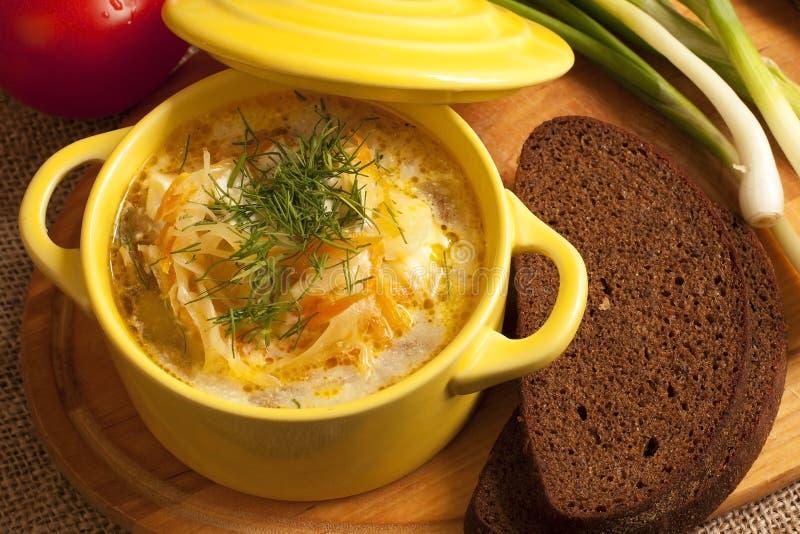 Кислый суп капусты стоковая фотография rf