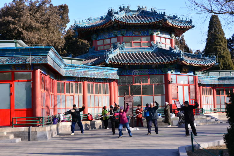 Китаец Kung Fu в парке Пекина стоковые изображения rf