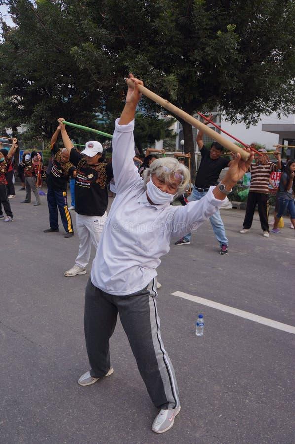 Download Китайская гимнастика редакционное стоковое фото. изображение насчитывающей спорты - 37931683