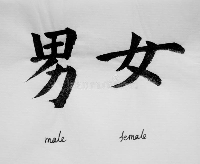 Китайская каллиграфия значит ` ` мужское женское для Tatoo стоковое фото rf