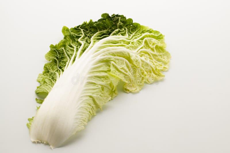 Китайская капуста стоковое изображение rf