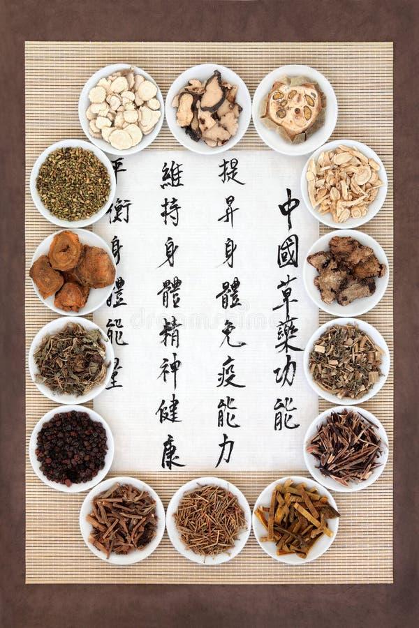 китайская микстура стоковые фото