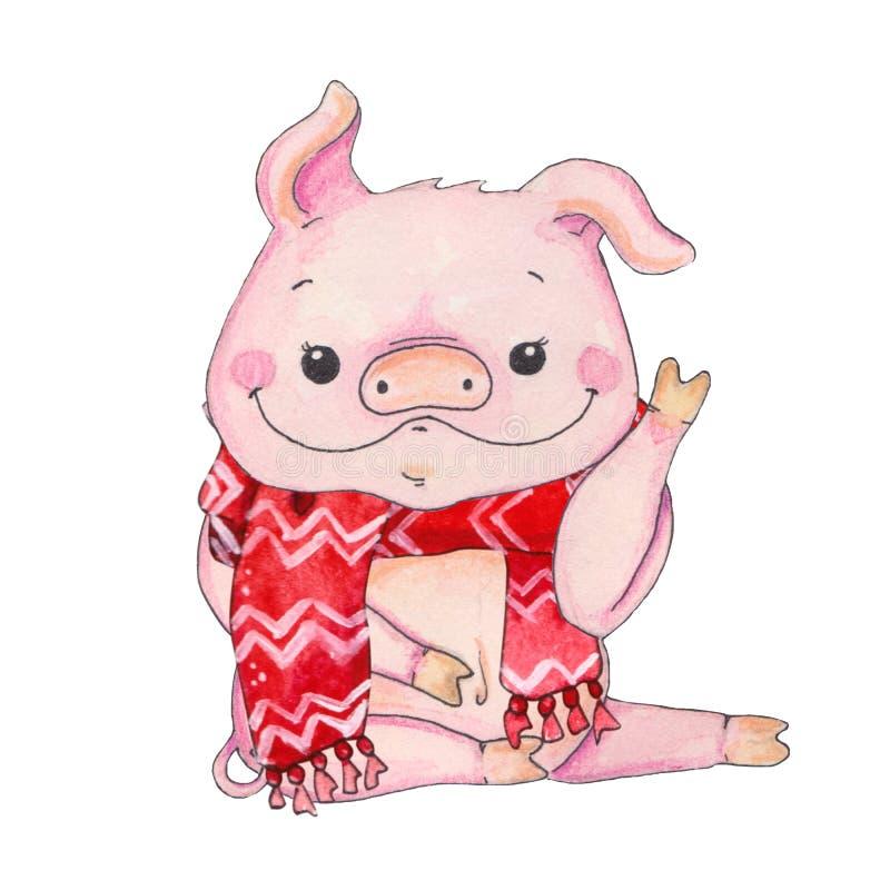 китайский год свиньи стоковые изображения rf
