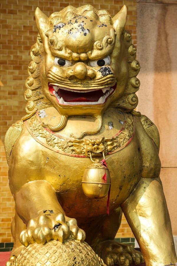 Китайский лев Staute золота стоковое изображение