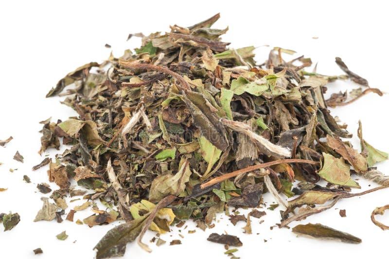 Download Китайский зеленый чай стоковое изображение. изображение насчитывающей этничность - 81810639