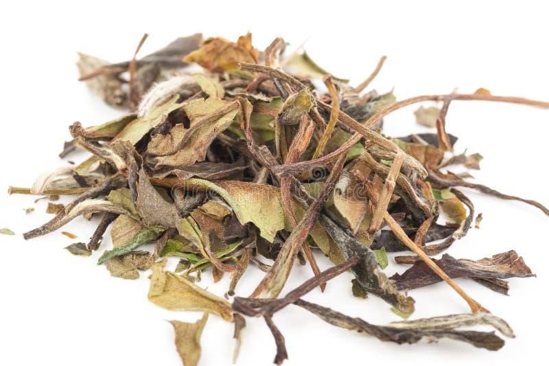 Download Китайский зеленый чай стоковое изображение. изображение насчитывающей темно - 81810713
