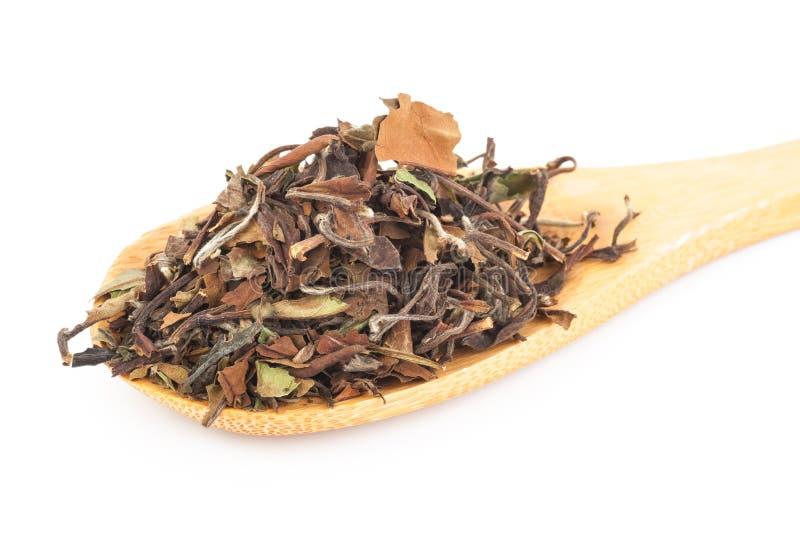 Download Китайский зеленый чай стоковое фото. изображение насчитывающей здорово - 81811848