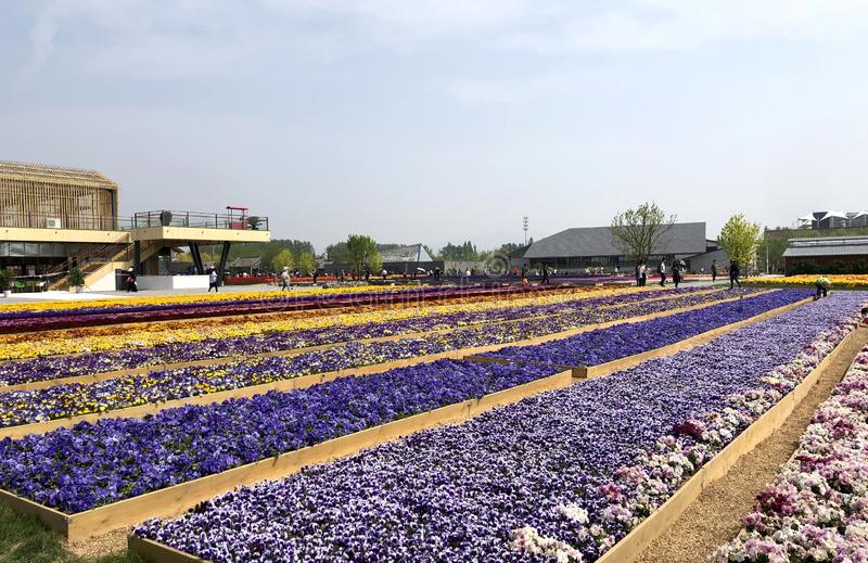 Китайский классический сад, китайские архитектуры, китайская культура, экспозиция 2019 Пекин международная садовническая стоковое фото