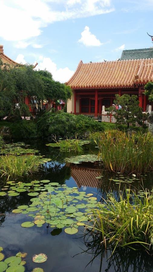 китайский пруд стоковые изображения