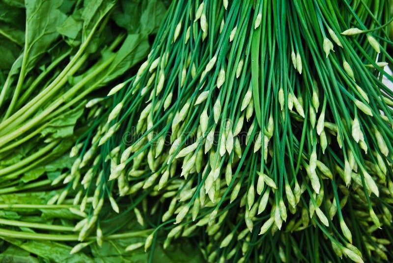 китайский свежий лук-порей много выходит на рынок стоковые фотографии rf