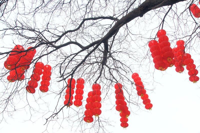 Китайский фестиваль весны стоковая фотография