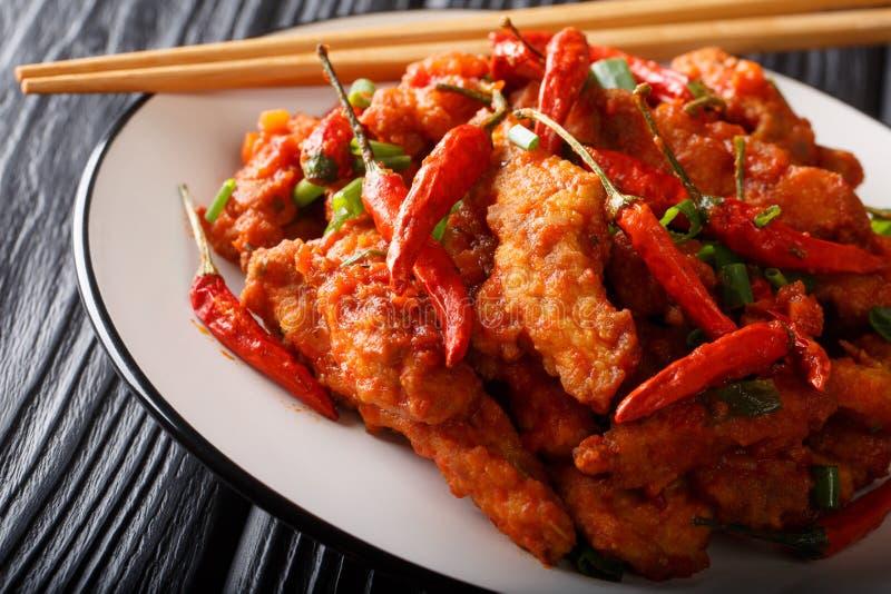 Китайский цыпленок еды в конце-вверх соуса Schezwan на плите E стоковые изображения