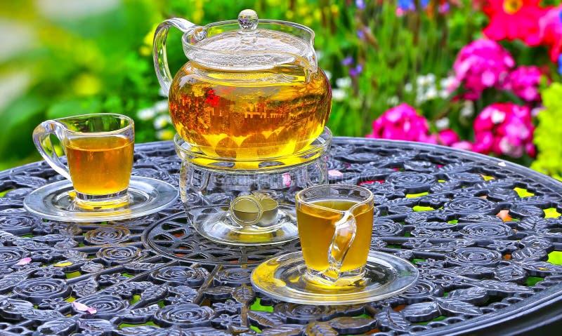 Китайский чай на таблице в саде стоковое фото
