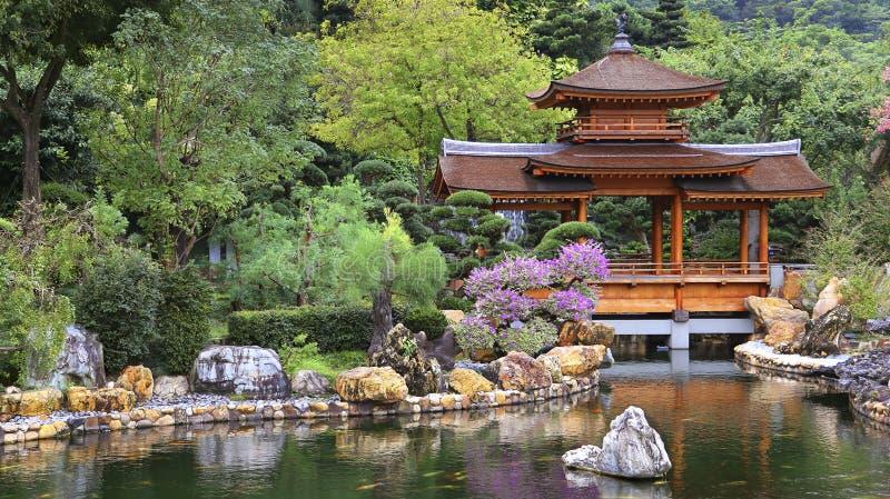 китайское Дзэн pagoda сада стоковые фотографии rf