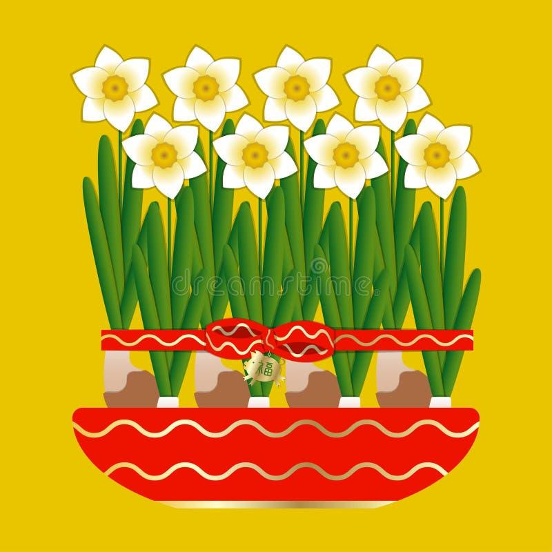 китайское Новый Год 8 narcissus зацветают в керамическом баке Связанный с красной лентой со смычком Привесная свинья с характером бесплатная иллюстрация