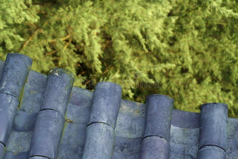китайское село крыши стоковые изображения