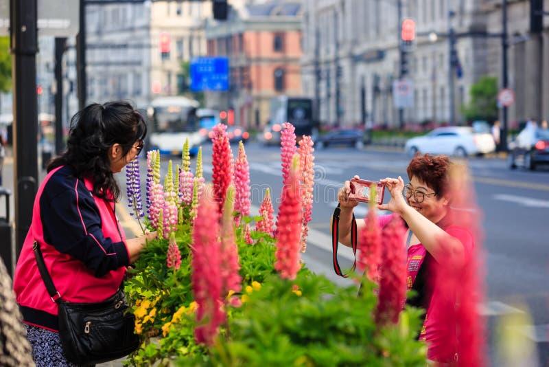 Китай, Шанхай 19-ОЕ АПРЕЛЯ 2019: старухи принимают фото в зоне бунда Шанхая стоковые фотографии rf