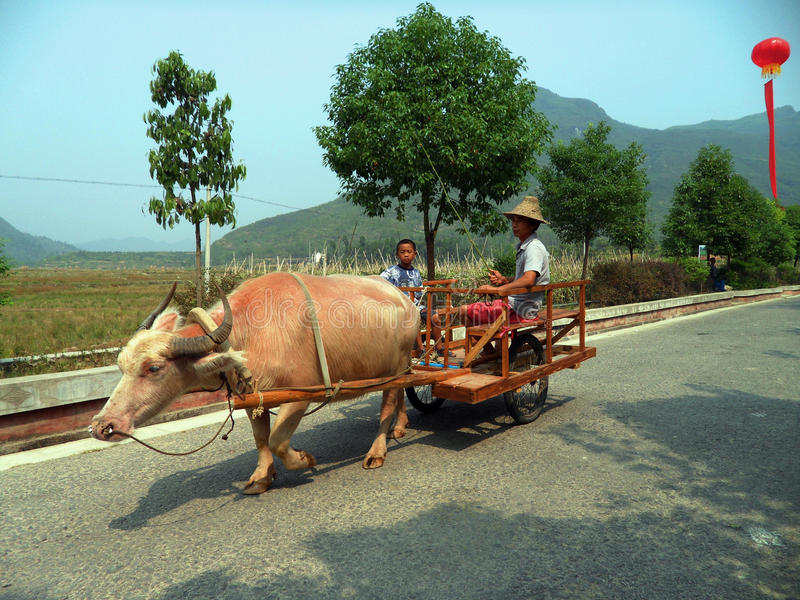 Китай, Guizhou, первоначально село стоковая фотография