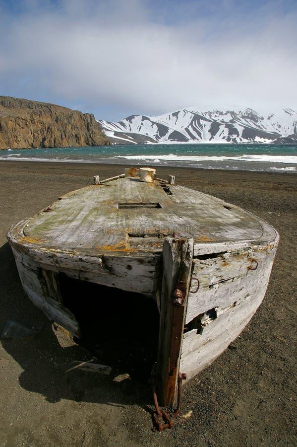 китоловство острова обмана шлюпки Антарктики стоковая фотография rf