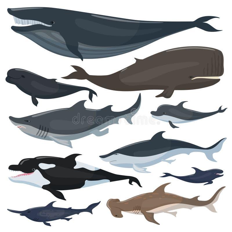 Киты, акулы дельфинов и другие морские животные млекопитающих бесплатная иллюстрация