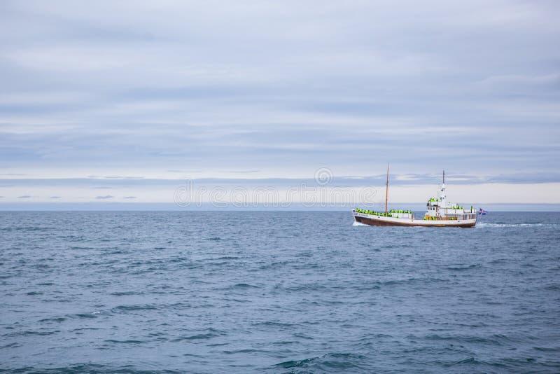 кит шлюпки наблюдая стоковые фото