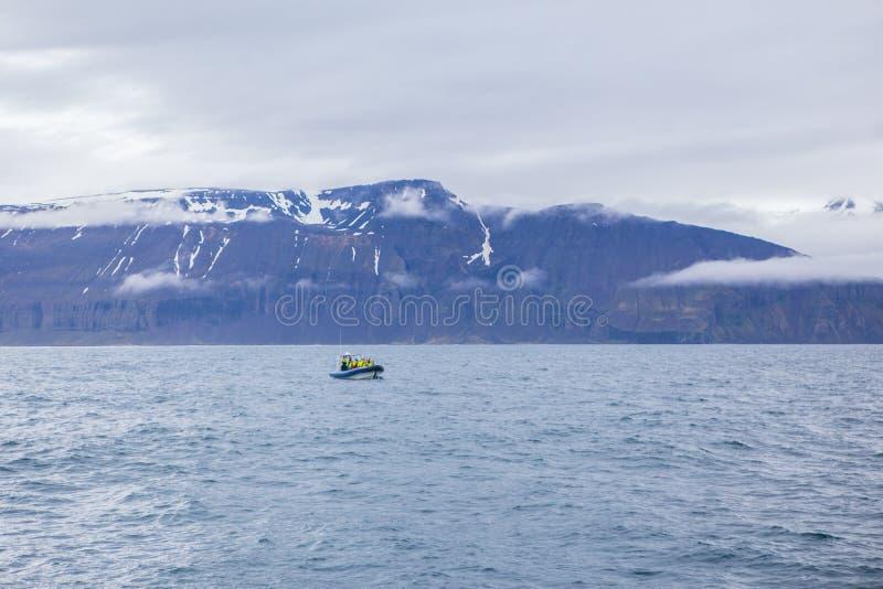 кит шлюпки наблюдая стоковое изображение