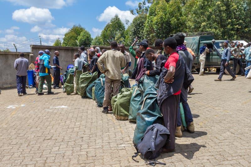 Килиманджаро trekking стоковая фотография