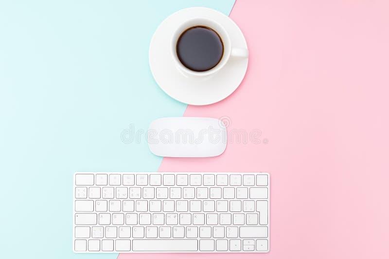 Клавиатура и мышь на предпосылке пастели 2 тонов Минималистский хлев стоковые фото