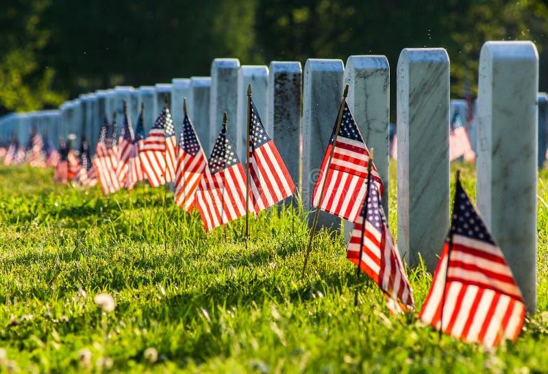 Кладбище ветерана с флагами стоковая фотография rf