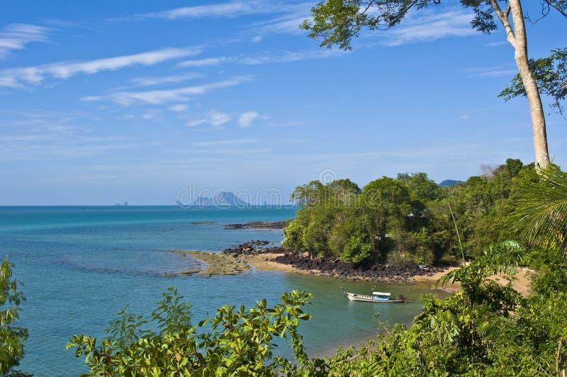 Кладбище пляжа раковины Сьюзан Hoi ископаемое стоковые изображения rf