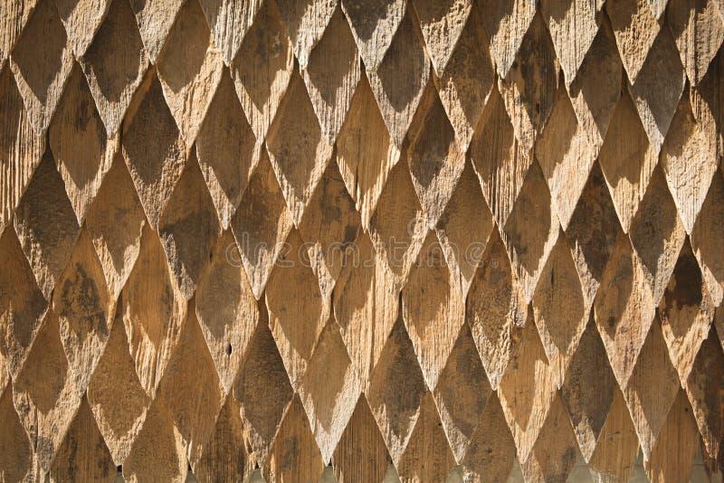 Классицистическая древесина стоковые фото