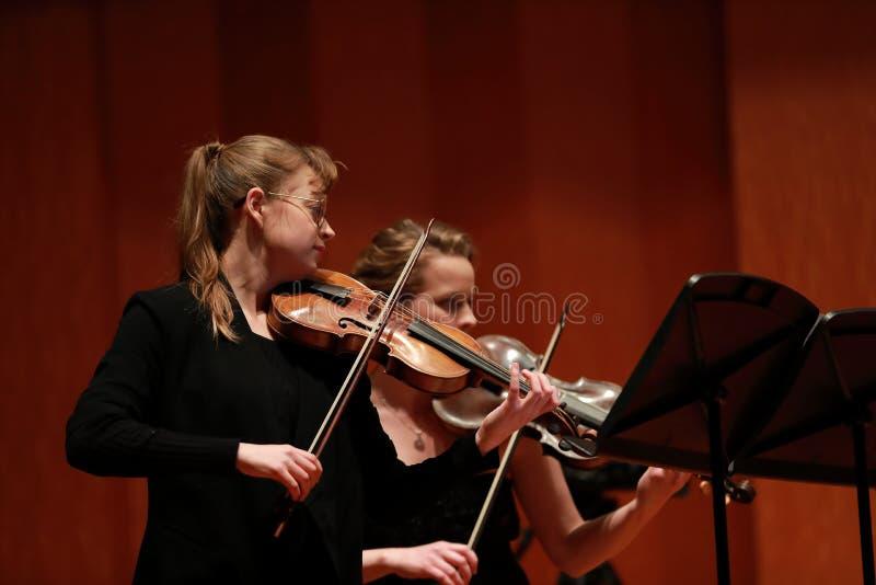 классическая музыка Скрипачи в согласии Зашнурованный, violinistCloseup музыканта играя скрипку во время симфонизма стоковые изображения rf