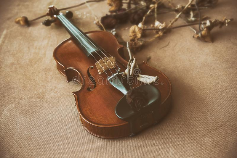 Классическая старая предпосылка дизайна фильма скрипки при высушенный цветок положенный на стиль деревянной доски, года сбора вин стоковая фотография rf