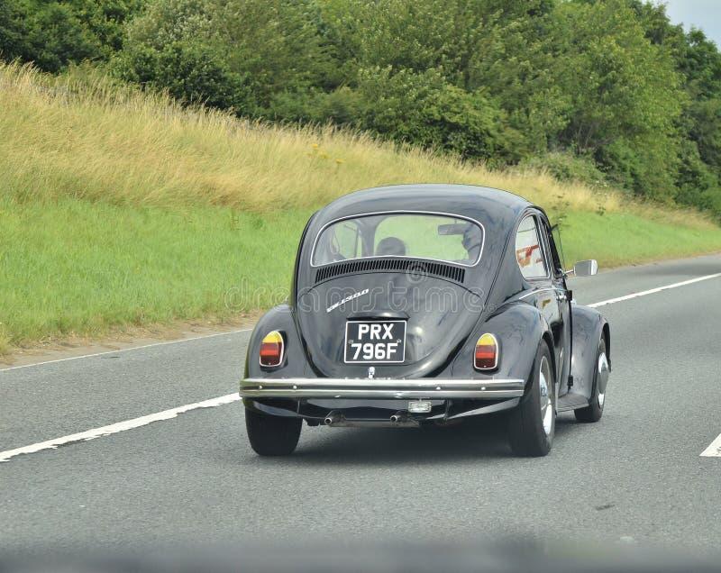 Классический автомобиль жука стоковое изображение rf